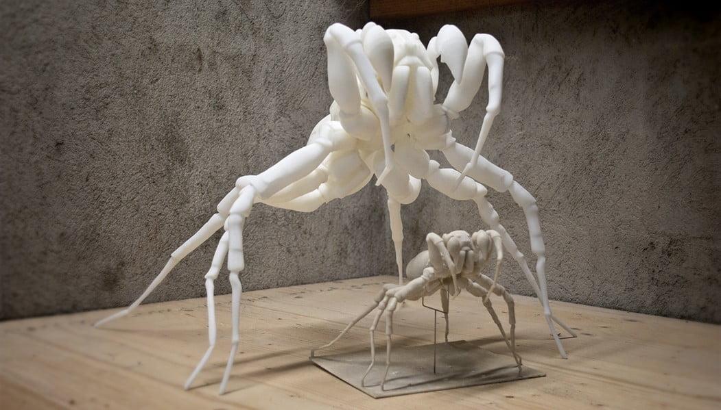 Pardosa Proxima, wolfsspinne, 3D-Druck, ABS-Print ikonaut