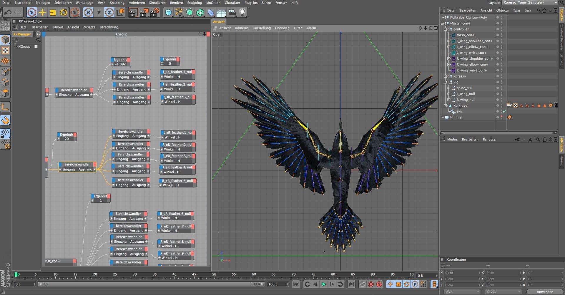 Kolkrabe Rig 2, birdly, ikonaut