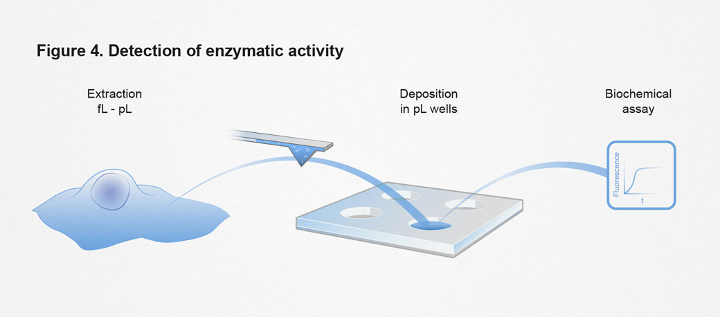 ETH, Detection of enzymatic activity, einzelzell-extraktion, ikonaut