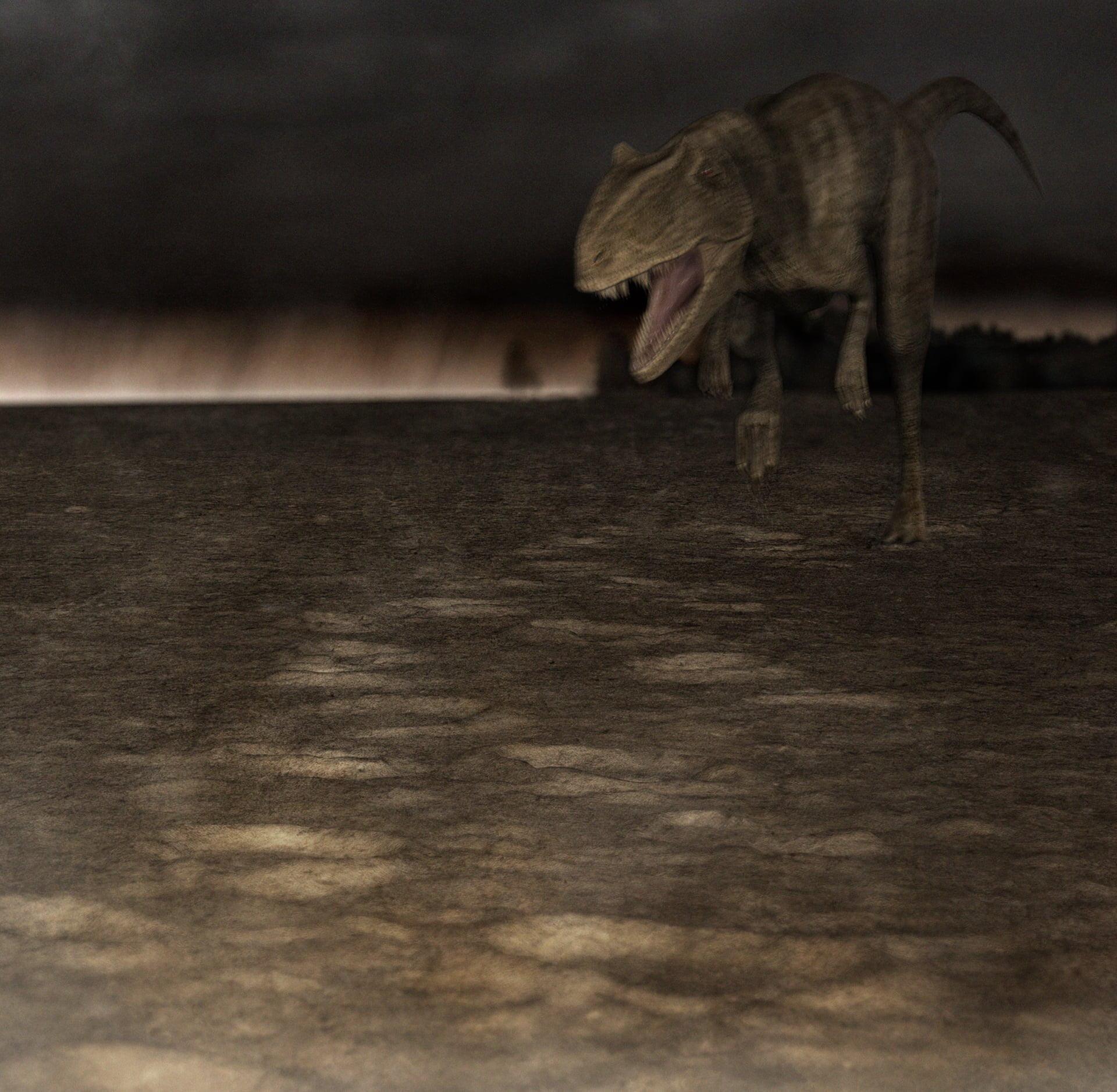 Wildwechsel – Verfolger, Allosaurus