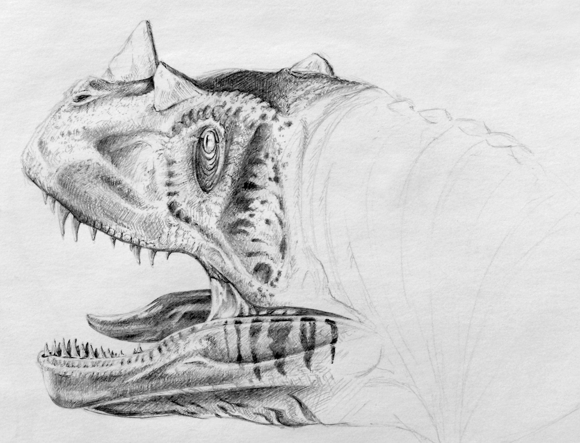Carnotaurus, Tierstudien, ikonaut
