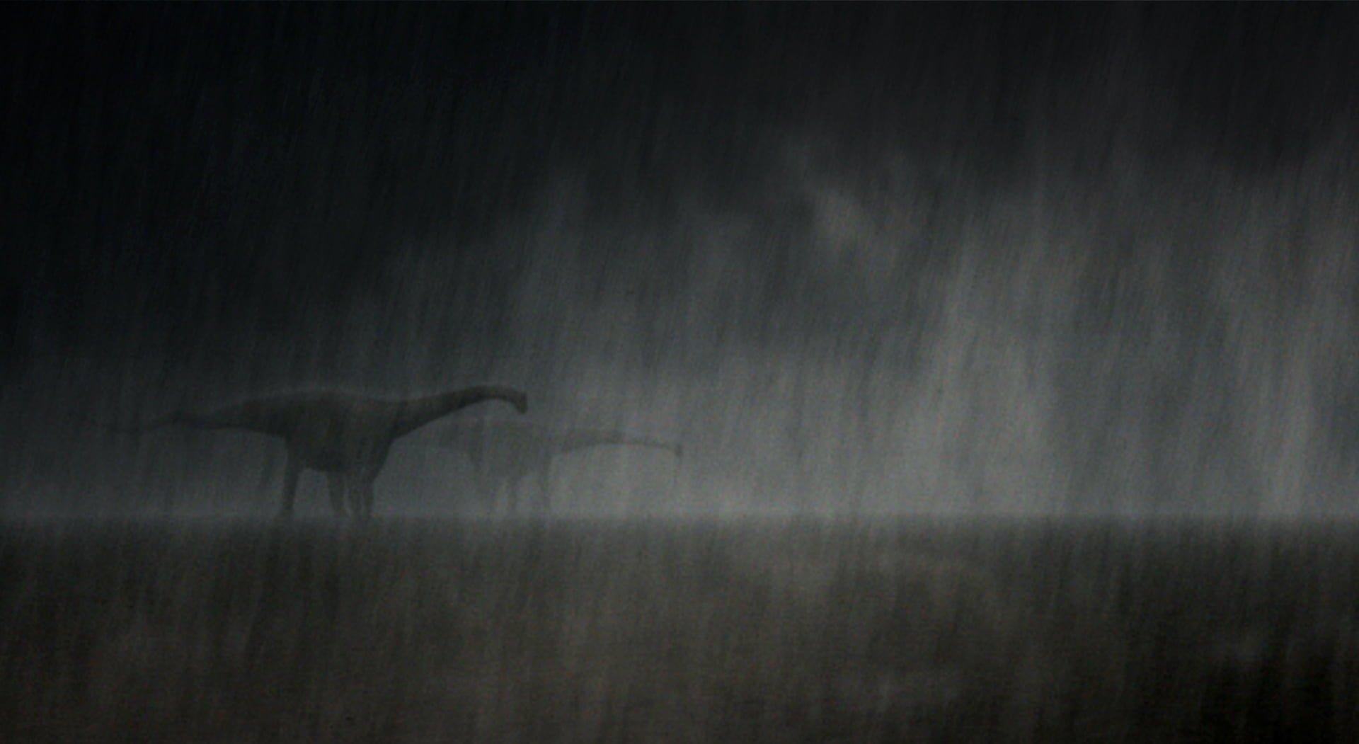 Wildwechsel – Regen, Diplodocus, ikonaut