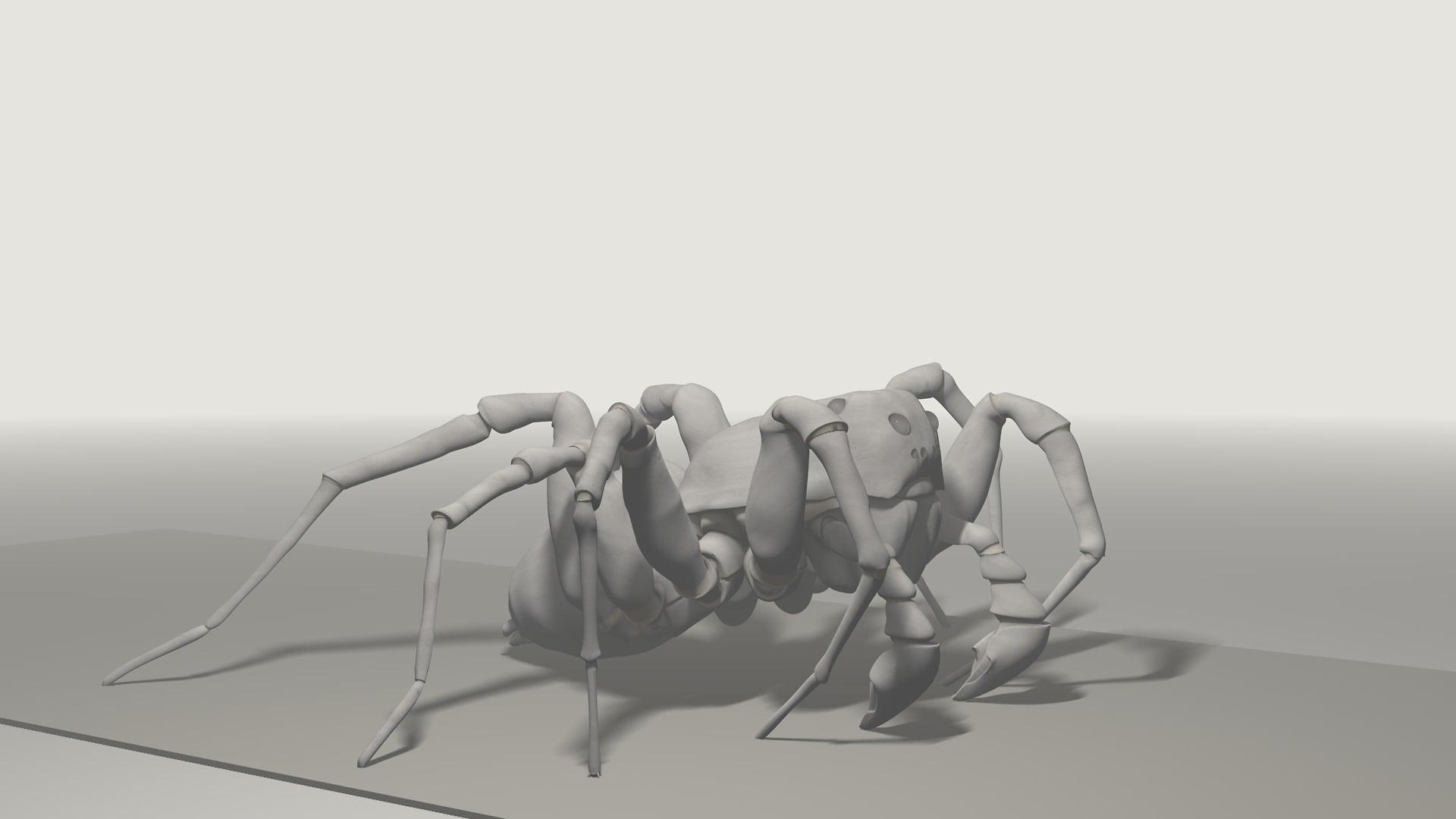 Pardosa Proxima, identisch und doch grundverschieden, ikonaut