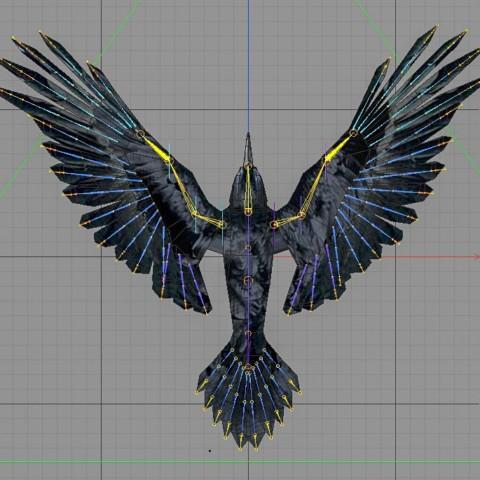 Birdly