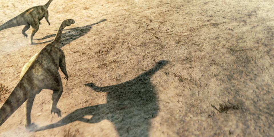 Plateosaurus, Dinosaurier, ikonaut