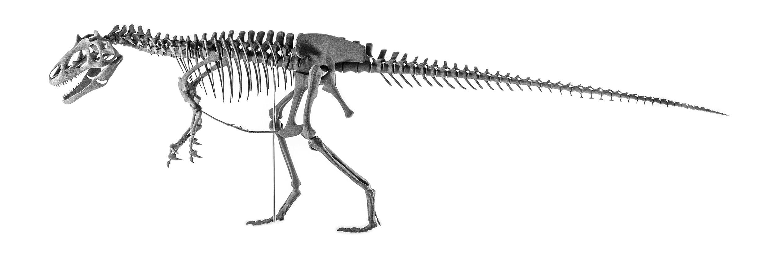 Allosaurus, sls-print, sintratec, ikonaut