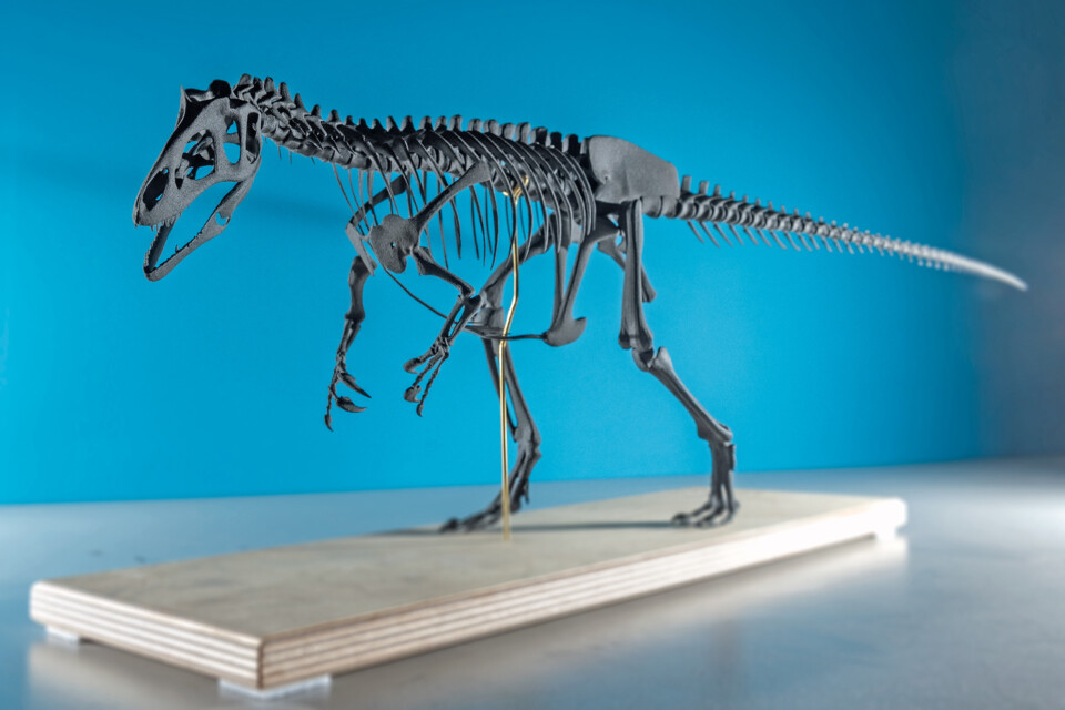 Allosaurus, 3d-print, colour, sintratec, ikonaut