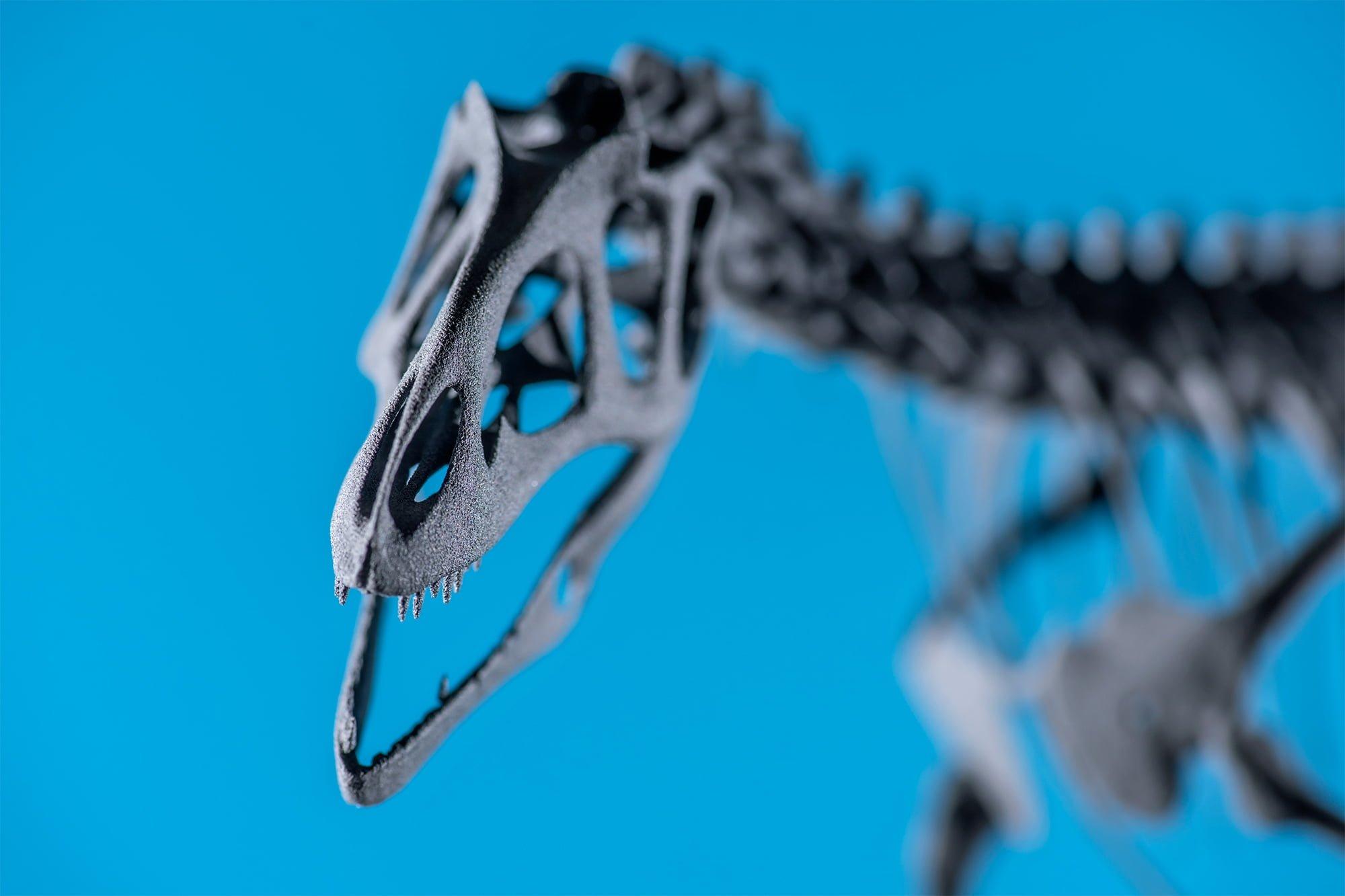 Allosaurus, sls-print, colour, zoom, sintratec, ikonaut