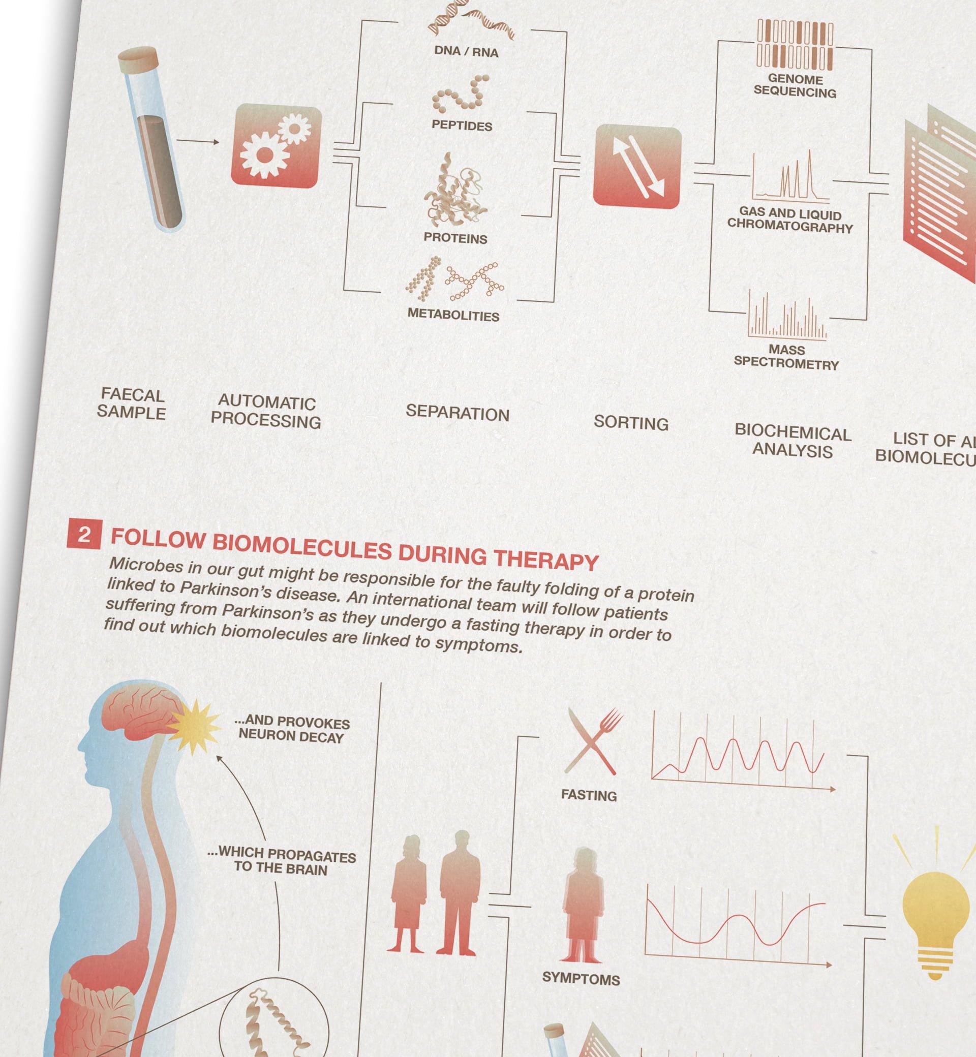 FNR infografik 9 biomolecules ikonaut